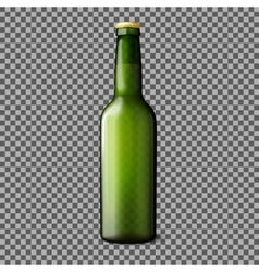 Green transparent realistic beer bottle isolated vector