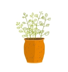 Indoor leafy plant in pot hand drawn vector