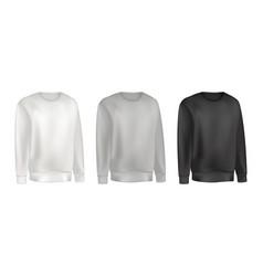 Man clothing set sweatshirt and raglan sweater vector