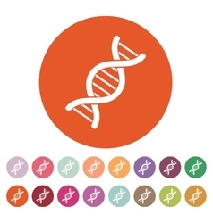 The dna icon Genetics and medicine molecule vector image