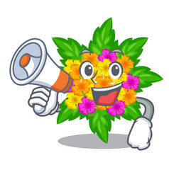 With megaphone lantana flowers in the mascot pots vector