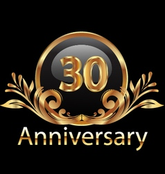 30 years anniversary birthday in gold vector image