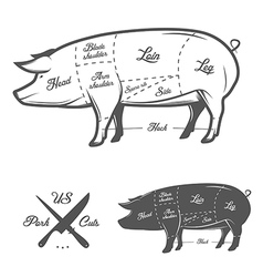 American US cuts of pork vector