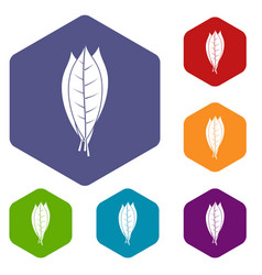 Culinary bay leaves icons set hexagon vector