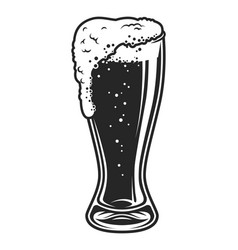full beer glass cup template vector image