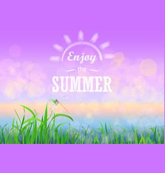 Green grass with bokeh sunset sky enjoy summer vector