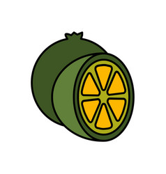 Lemon fruit icon vector
