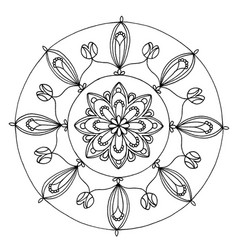 mandala 1 image vector image