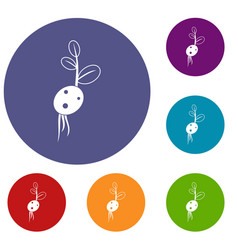 Potato sprout from the root icons set vector