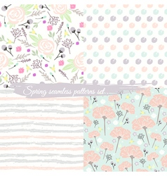 Seamless spring floral patterns set vector image