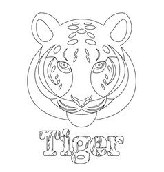 tiger coloring page for kids wild mammal is an vector image