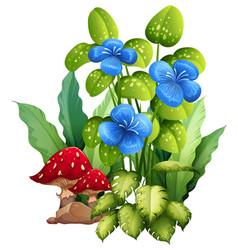 Tropical blue flowers with mushroom vector