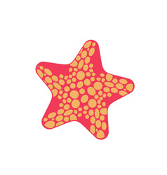 starfish isolated sea animals on white background vector image