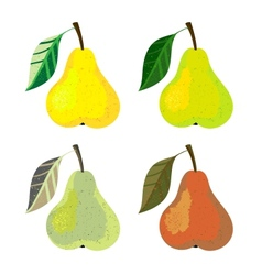 a pear fruits vector image
