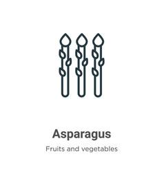 Asparagus outline icon thin line black asparagus vector