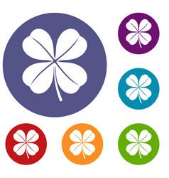 clover leaf icons set vector image