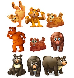 Cute bear movements vector image