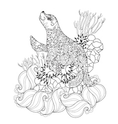 Hand drawn doodle outline sea lion vector image