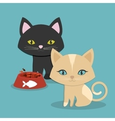Pet icon image vector