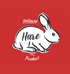 poster for butchery meat shop with hare vector image