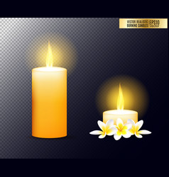 realistic burning candle transparency grid vector image