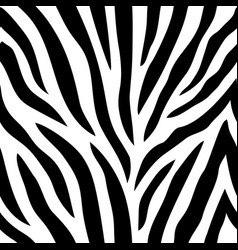 seamless pattern with zebra stripes vector image