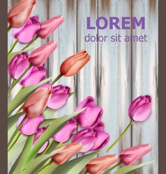 tulips card watercolor wooden texture background vector image