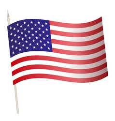 waving flag on a flagpole national vector image