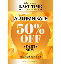 Autumn sale flyer vector