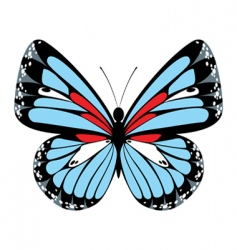 blue butterfly vector image vector image