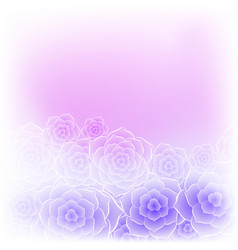 beautiful purple pink rose flower background vector image
