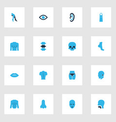 Body icons colored set with foot face breast and vector