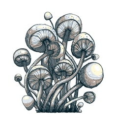 Cramped Toadstool Mushrooms Composition vector