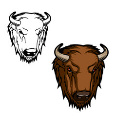 Bison or buffalo bull head mascot vector