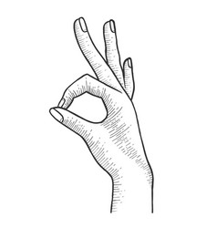 hand with ok gesture sketch engraving vector image