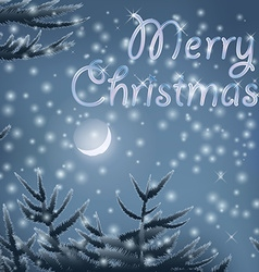 Merry Christmas post card with trees moon night vector