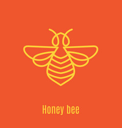 thin line icon honey stick vector image