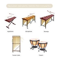 Set of Musical Percussion Instruments vector image vector image