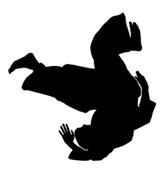 Aikido fighter silhouette training self defense vector