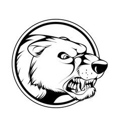 angry bears head vector image
