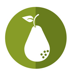 Avocado health diet icon shadow vector