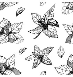 black and white seamless pattern with mint mint vector image