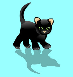 black kitten looks at his shadow little surprised vector image