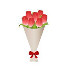 bouquet red tulips in paper with red bow vector image