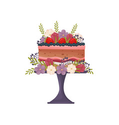 Chocolate cake with red burgundy and white cream vector