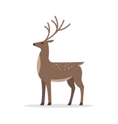 deer male flat isolated on white background vector image vector image