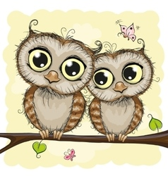 Greeting card with Two Owls vector