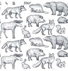 Seamless pattern with hand drawn animals of vector