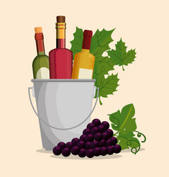 Set red wine bottles and grapes vector