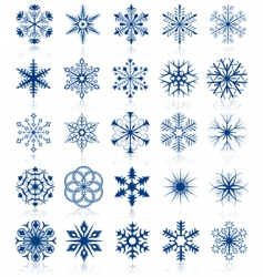 snowflake shapes vector image